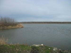 Harkakötöny halastó vízjogi engedélyezés